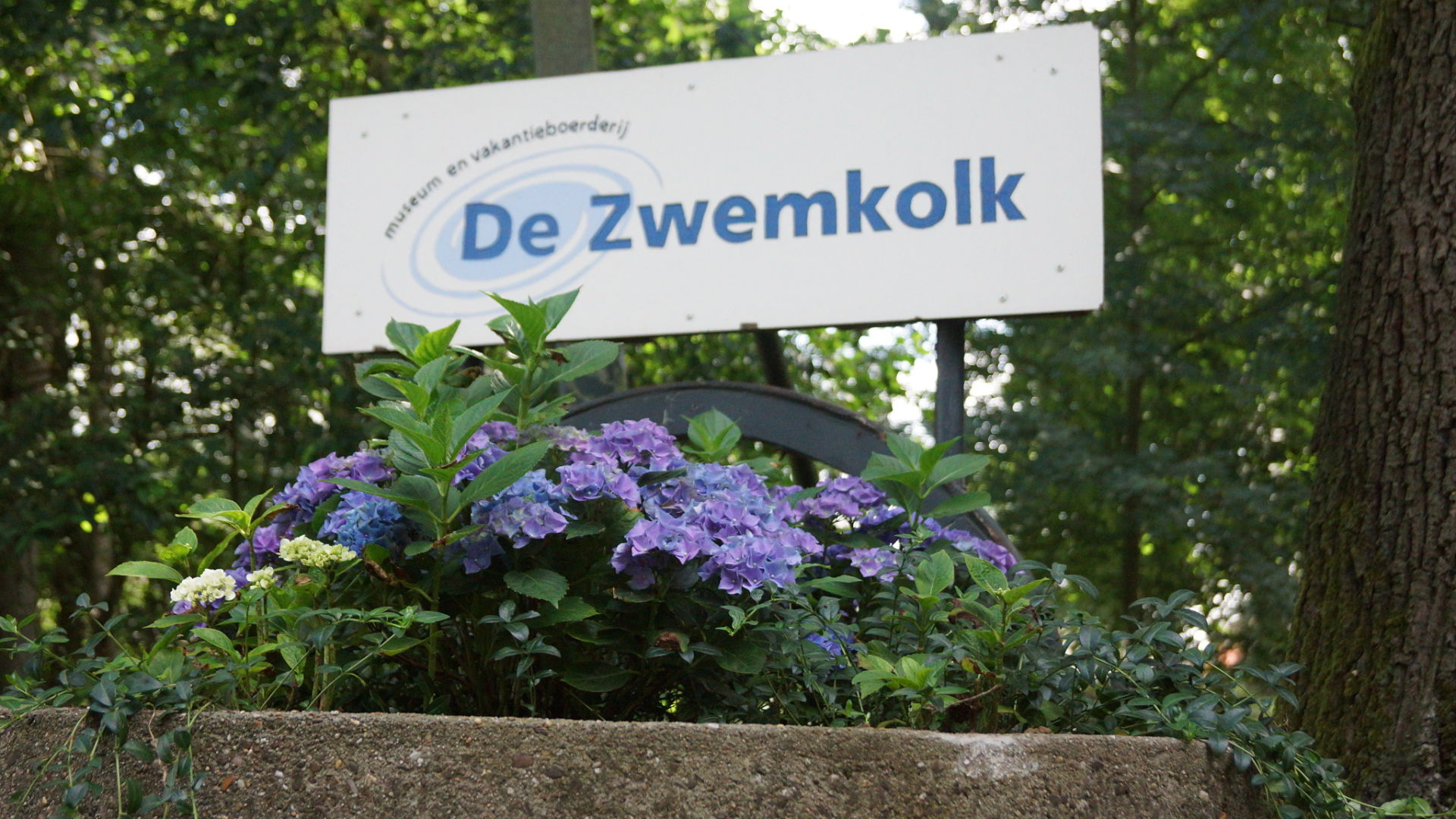 De-Zwemkolk-128_opt